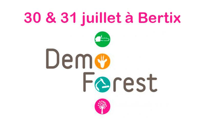 foire forestiere 2019 belgique